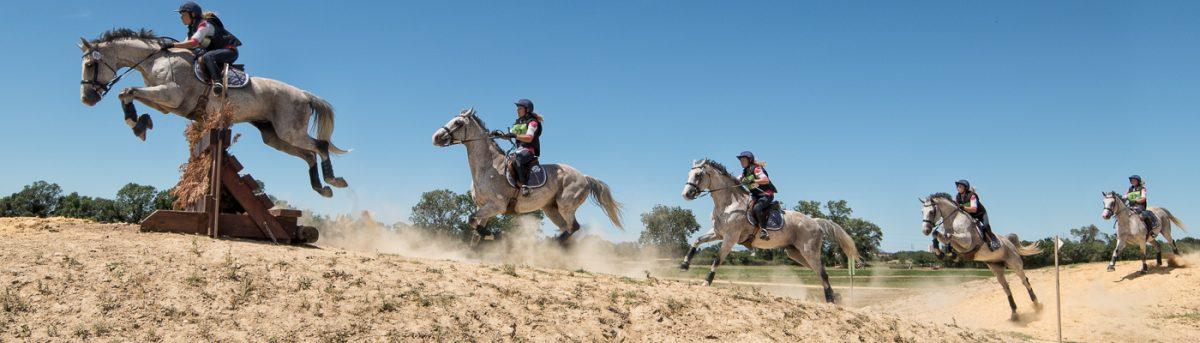 Cross, équitation, Panoramique, Christophe Pellé