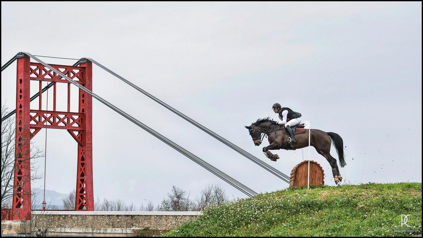 CCE, C.PELLE, Equitation