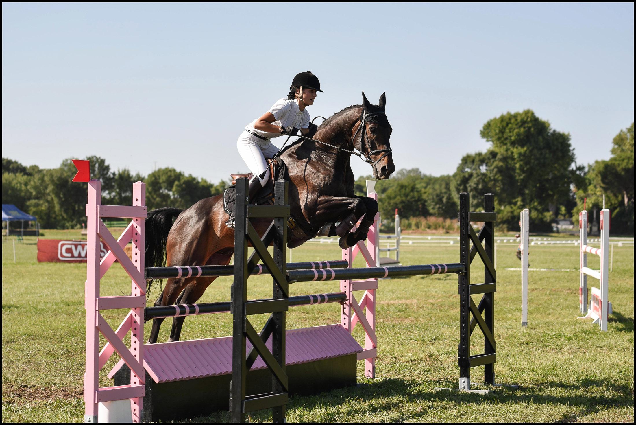 cce, C.PELLE, équitation