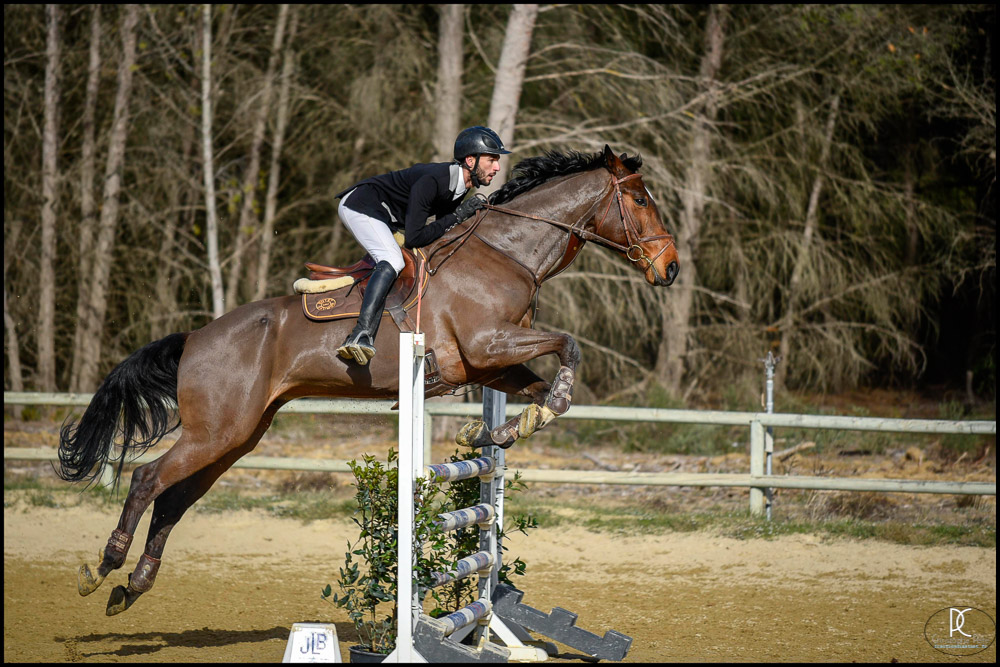 CCE, CPelle, CSO, Equitation