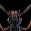 portrait de staphylinidae sur fond noir