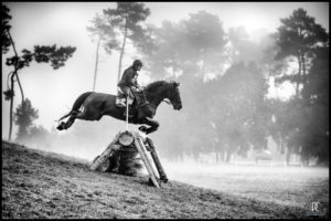 cross equestre brouillard